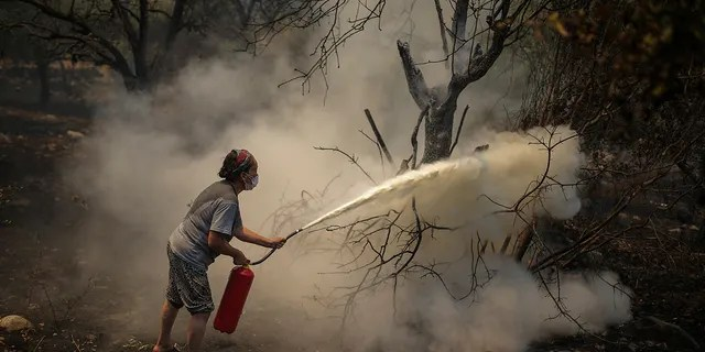A woman uses a fire extinguisher to save a burning tree in Cokertme village, near Bodrum, Mugla, Turkey, Tuesday, Aug. 3, 2021.