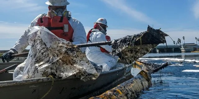 FILE - In this Sunday, Oct. 3, 2021, file photo, cleanup contractors deploy skimmers and floating barriers known as booms to try to stop further oil crude incursion into the Wetlands Talbert Marsh in Huntington Beach, Calif., after an oil spill off Southern California. Finding the cause of the spill, who's to blame and if they will be held accountable could take a long time.