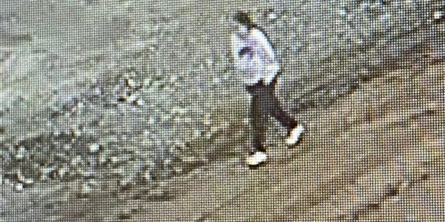 Investigators last year found surveillance footage from Dec. 23 that showed Hejji walking alone on the Armargosa Trail near the front base of Black Mountain.