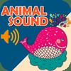 HUANG YIN - Animal Sounds Boards HD artwork