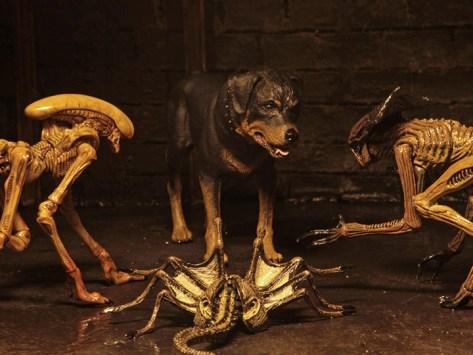Resultado de imagen para Alien 3 – Accessory Pack – Creature Pack