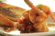 cobalt shrimp