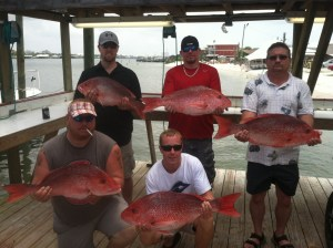 gulf shores fishing charters bringing in lots of tasty red snapper
