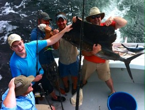 Sailfish reeled in during a 8 hr shared expense gulf shores al fishing charter aboard Cool Breeze