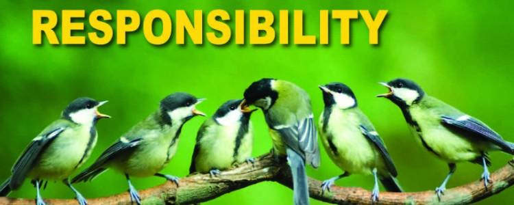 Responsibility Pledge