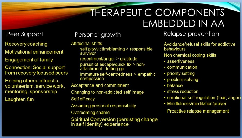 Therapeutic Components of AA