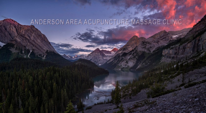 acupuncture calgary coverpage elk lakes