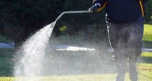 Necessity to Fertilize Your Lawn