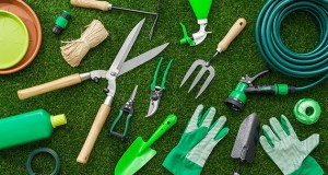Tree Protection Weapons