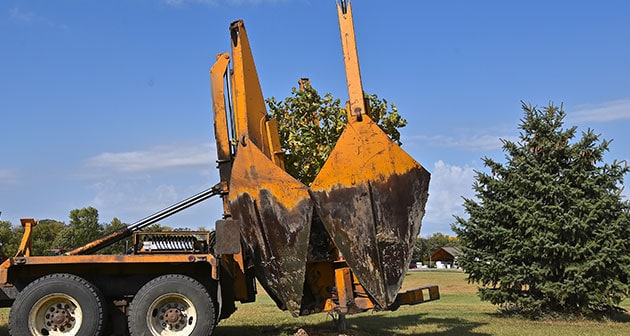 Reasons Why Commercial Tree Removal Is Important