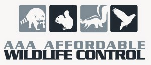 AAA Affordable Wildlife Control logo