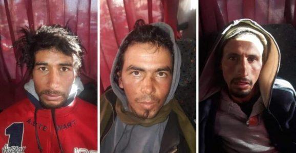 """.دفاع متهمي جريمة """"شمهروش"""" يطالب بالخبرة الطبية"""