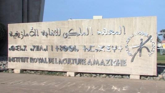 معهد الثقافة الأمازيغية