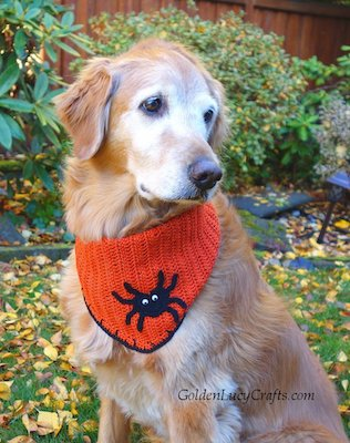 Halloween Dog Bandana