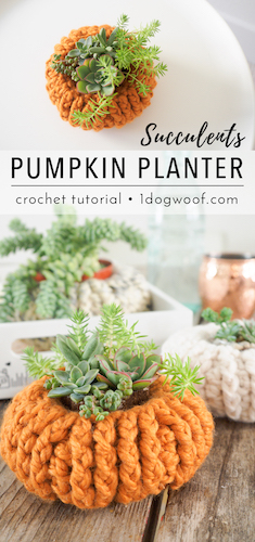 Pattern: Crochet Succulent Pumpkin Planter from One Dog Woof
