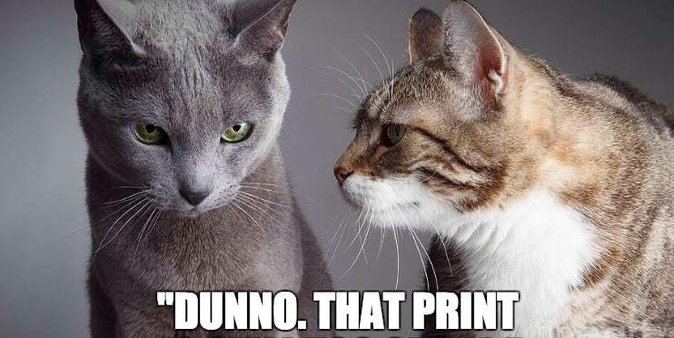 Image of cats trying to read meme