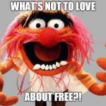 Image of the muppet Animal, saying, What's not to love about free?!