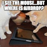 """Image of cats with """"I see the mouse, but where is AirDrop?"""" meme"""