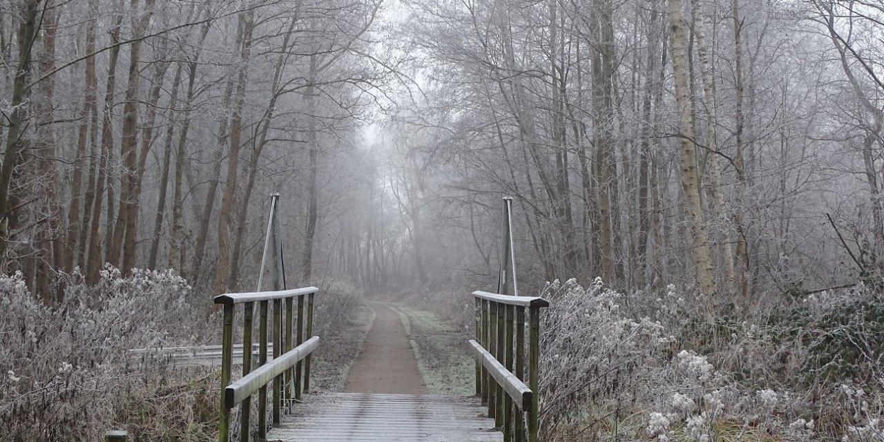Weerribben winterwandeling