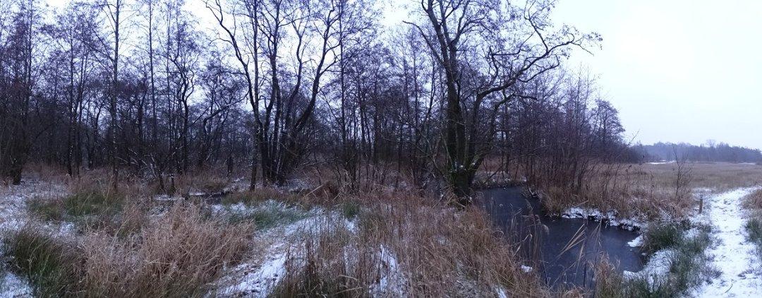 Winter aanblik Kiersche Wieden
