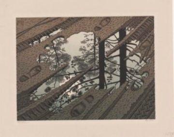 Modderplas van Escher