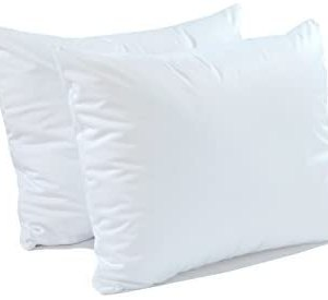 bed bug pillow protector