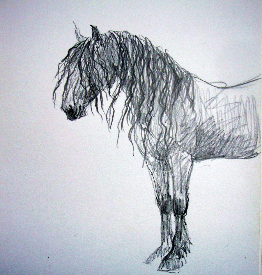zuidlaardermarkt Horse fair art sketch6
