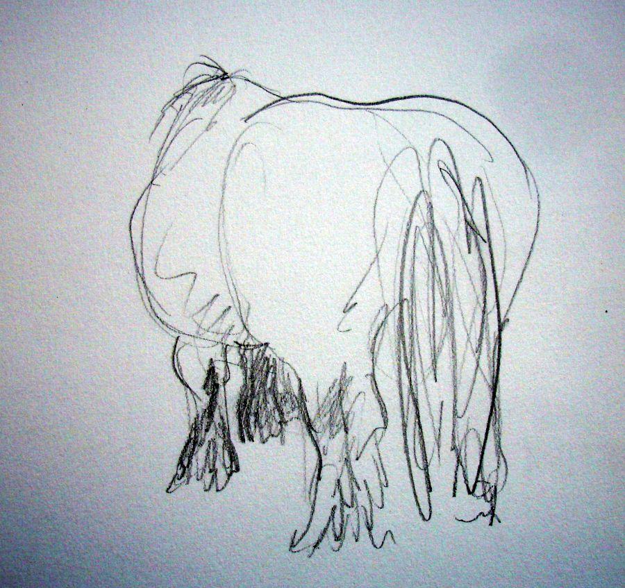zuidlaardermarkt Horse fair art sketch8