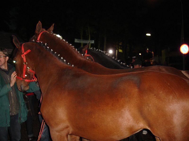 zuidlaardermarkt Horse fair art
