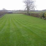 Garden maintenance and lawn management