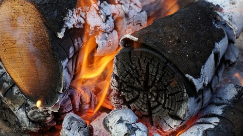 The role of wood fuels in Africa-Research II