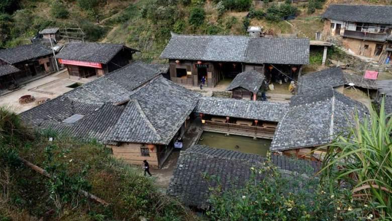 مچھروں سے پاک چینی گاؤں دریافت: سائنسدان حیران
