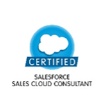 salesforce Sales Colud Consultant Certification