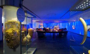 متحف بودروم تحت الماء للآثار