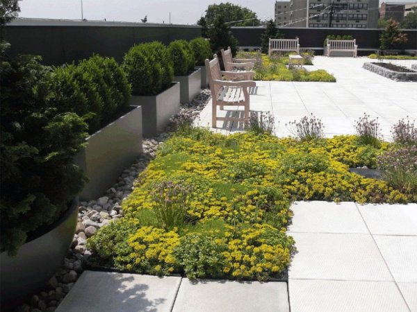 hospital rooftop gardens Hospital Roof Gardens Soothe Patients and Staff