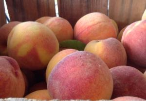 Crate of Tyler peaches