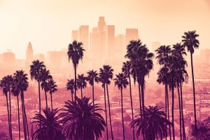 Tech Savvy Accountants in Los Angeles are in Demand