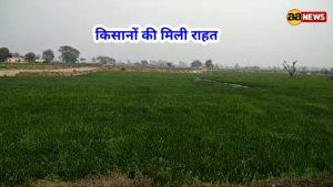 इस बार का बजट गरीब व किसानों का बजट है– रजनीश त्यागी, सदस्य राष्ट्रीय कार्यकारिणी किसान मोर्चा बीजेपी।