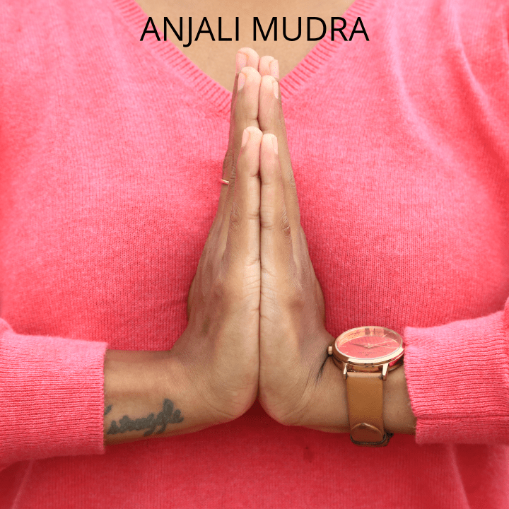 the anjali mudra which is a hand position used for meditation in yoga