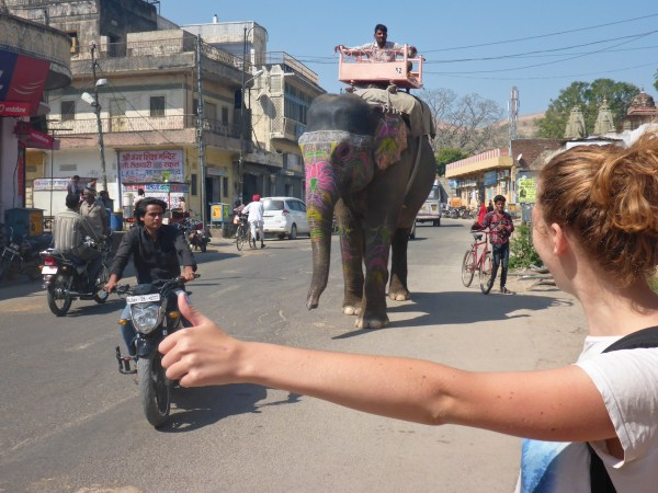 Just hitching an elephant