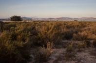 Spanish desert