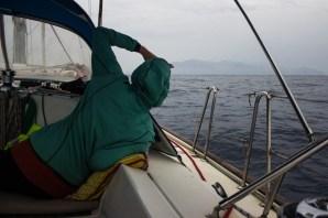 Spotting Cape Verde