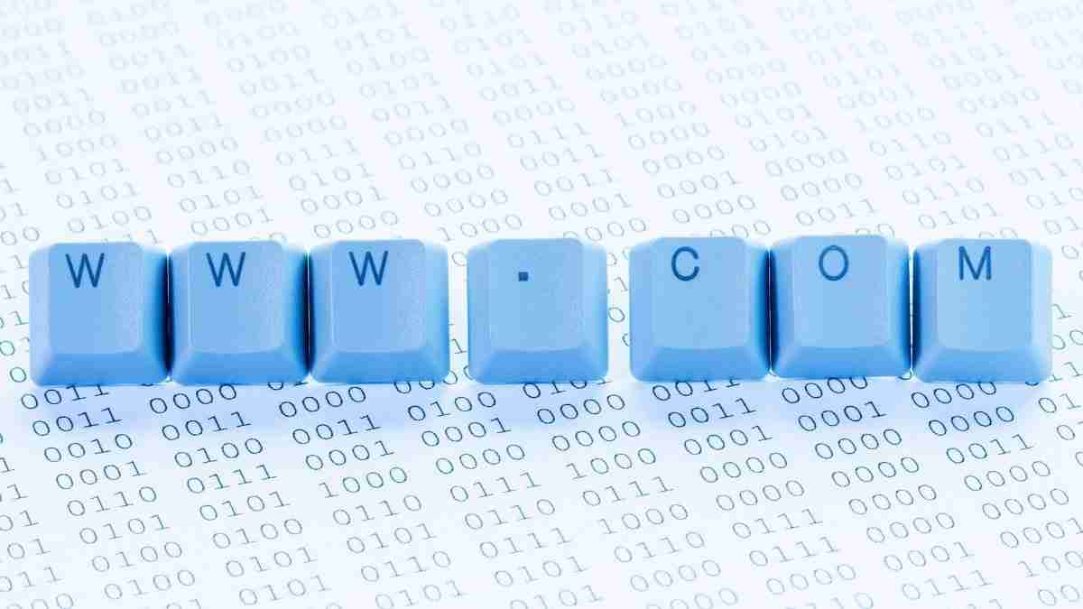 डोमेन नाम और URL के बीच अंतर क्या है Domain vs URL in Hindi