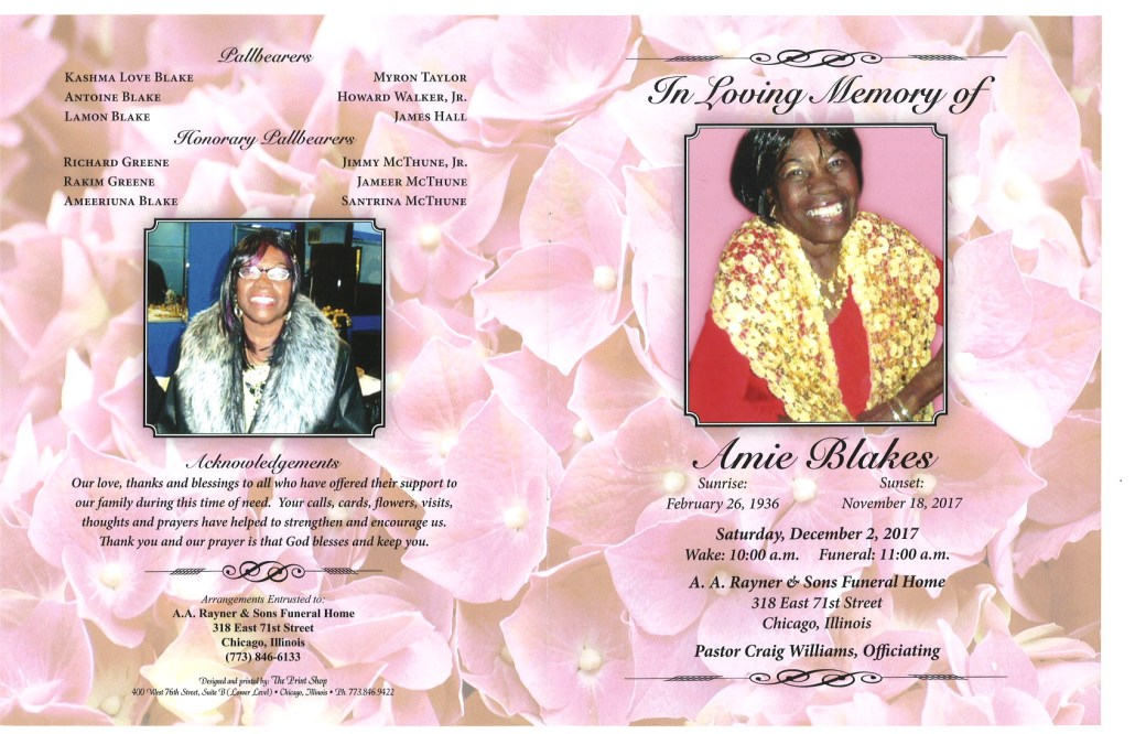 Amie Blakes Obituary