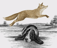 The quick, brown fox jumps over a lazy dog