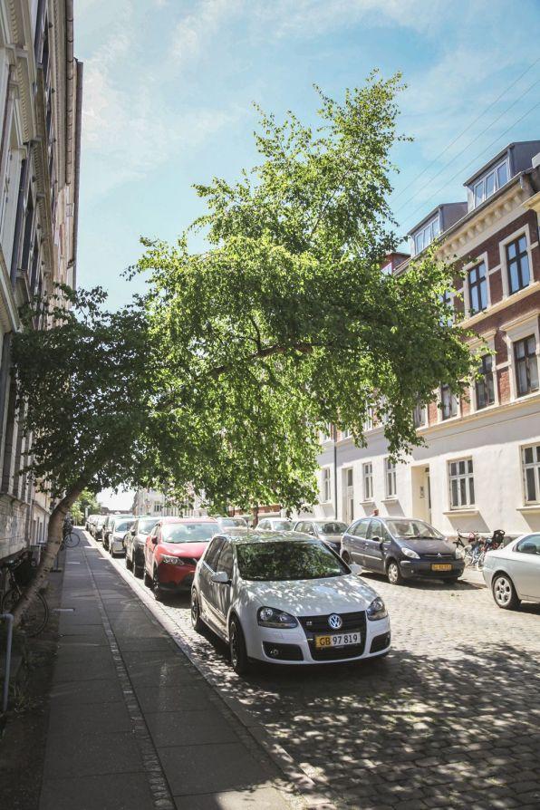 øgaderne-aarhus-panorama-pernille-thorup13