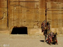 Taxis en Petra