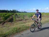 cycling-through-vineyards
