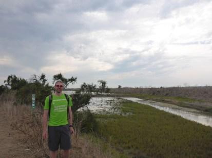 walking-past-the-salt-marshes