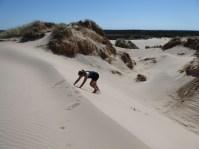 Rabjerg Mile (climbing dunes)
